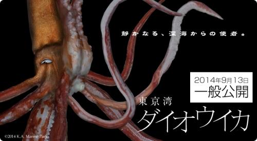 main_daiouika